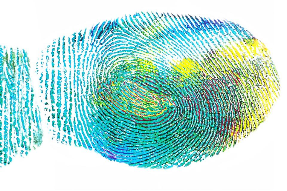 turkis fingeravtrykk